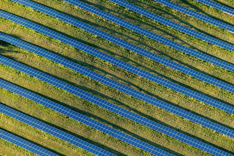 solar-panel-rows
