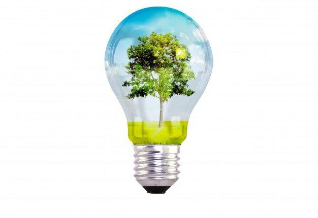 light-bulb-with-tree-inside_1232-2102